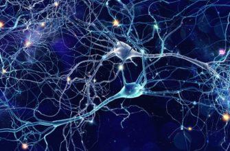 Отравляющие вещества нервно-паралетического действия